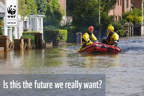 WWF_wet